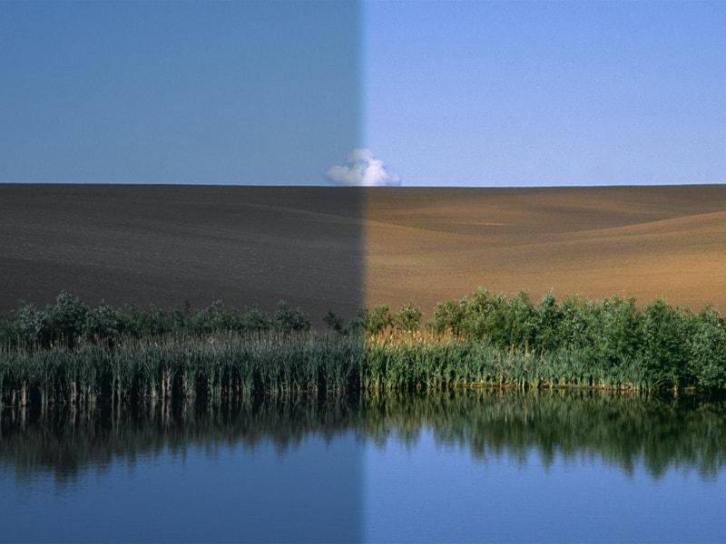 Основы обработки в Adobe Photoshop